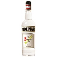 BB LICOR SAMBUCA MOLINARI BCO EXTRA 750ML